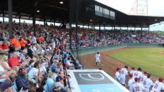 Macon Bacon Baseball