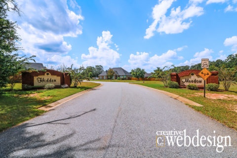 Hidden Meadow subdivision homes for sale in Perry GA 31069